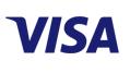 Paygate Visa Logo