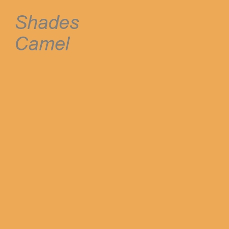 Shades Camel Colour Swatch
