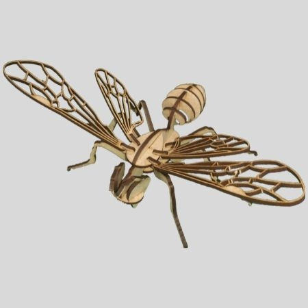 Laser Cut - 3D Insect Model - Bee