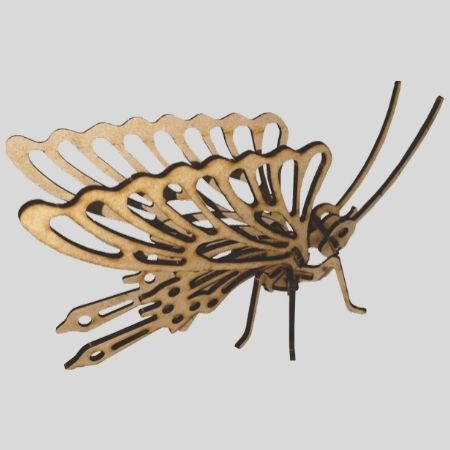 Laser Cut - 3D Insect Model - Butterfly
