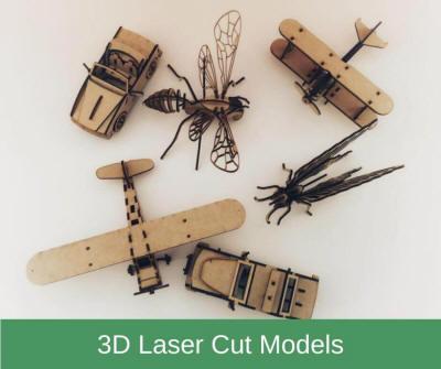 3D Laser-Cut Models